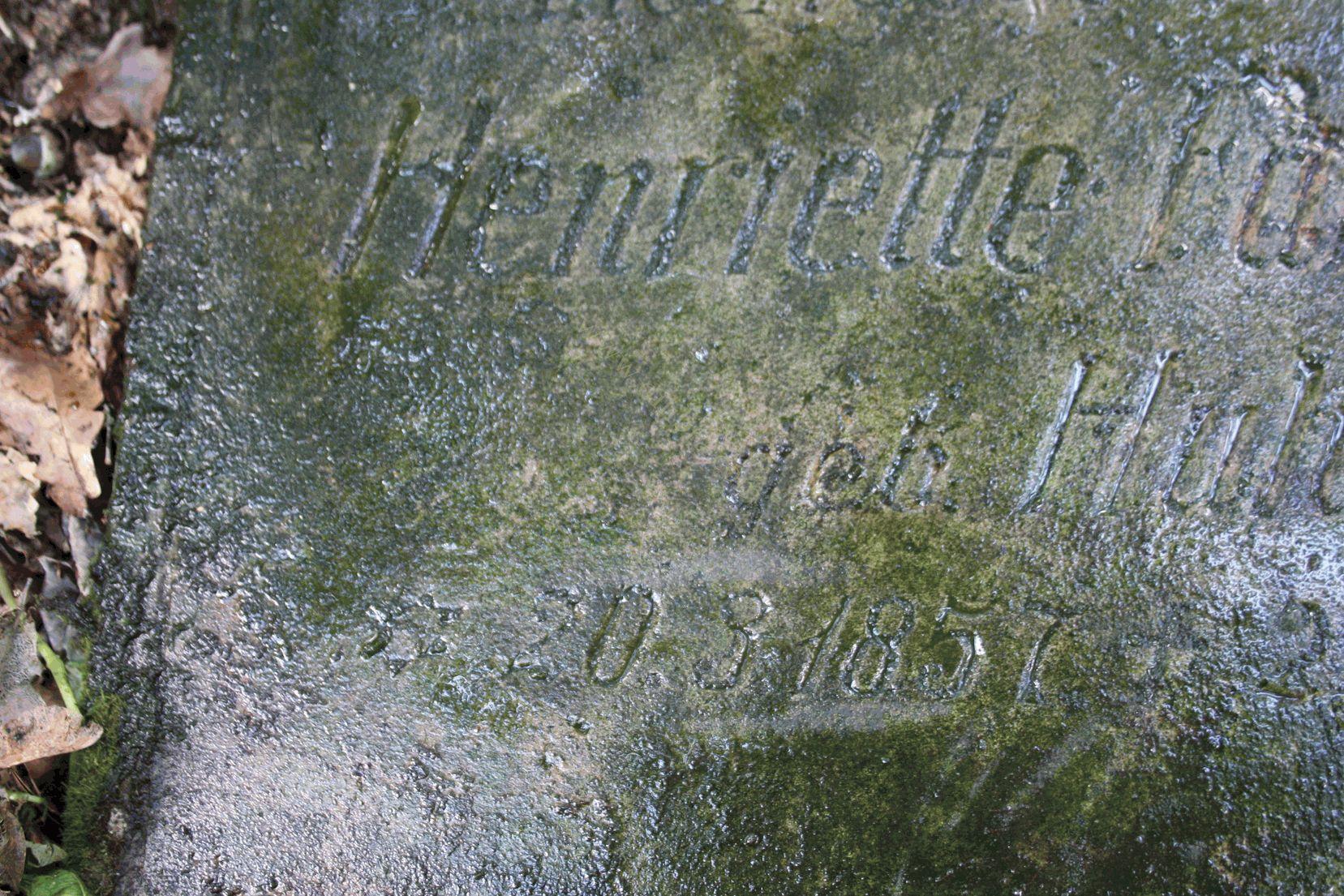 HenrietteFanselow - Oststernberg, Neumark, Huhn, Grabstein, Fanselow, Beatenwalde, 1932, 1857
