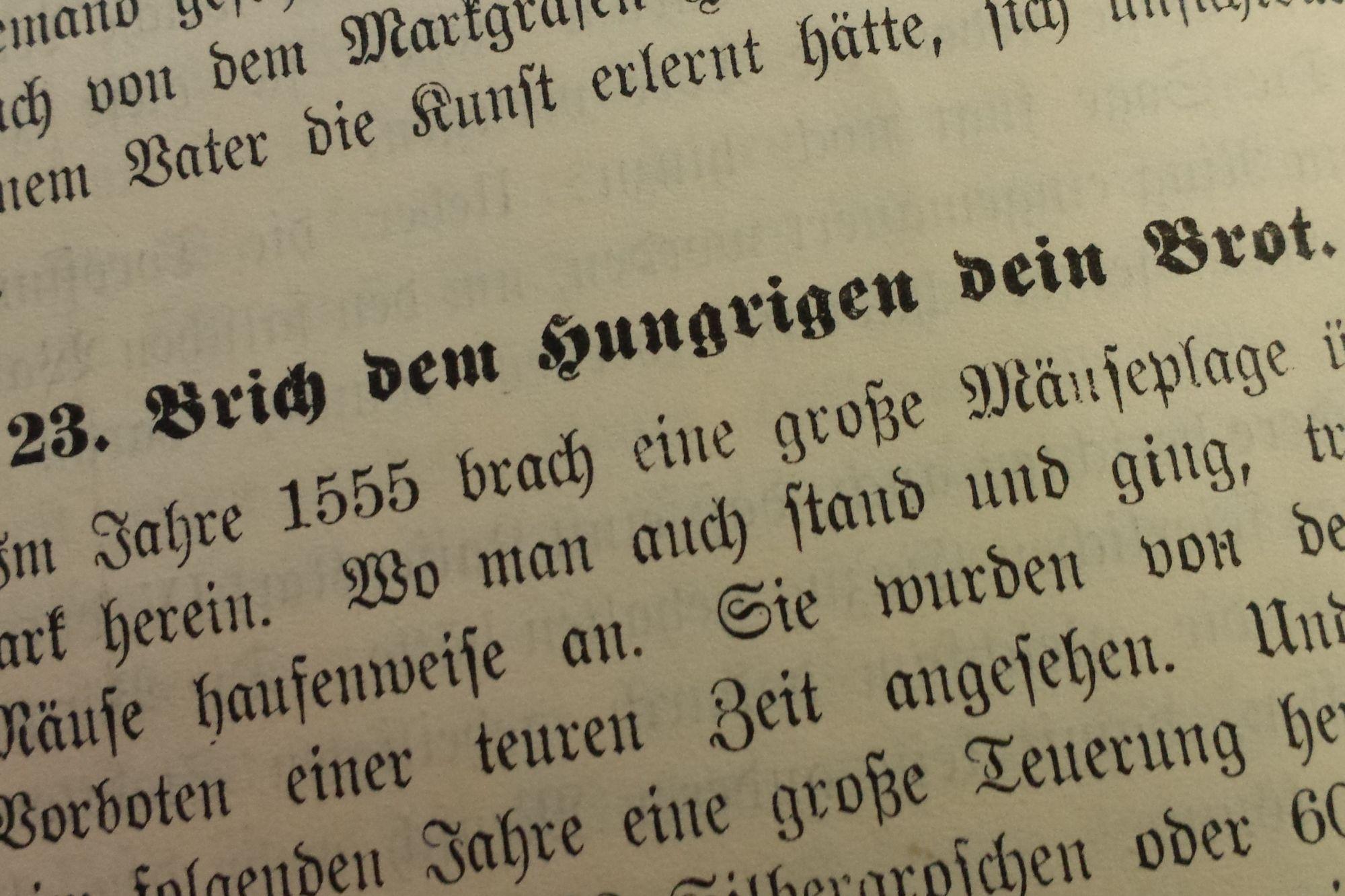 Paul Biens Brich dem Hungrigen dein Brot - Silbergroschen, Schlangenbiss, Neumark, Mäuseplage, Erntesegen, Edelfrau, 16. Jahrhundert